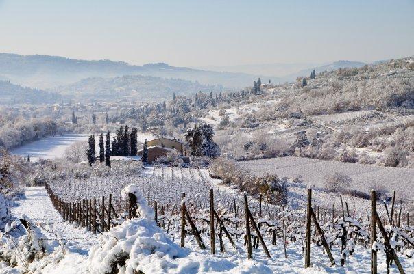 Arezzo Snow 3
